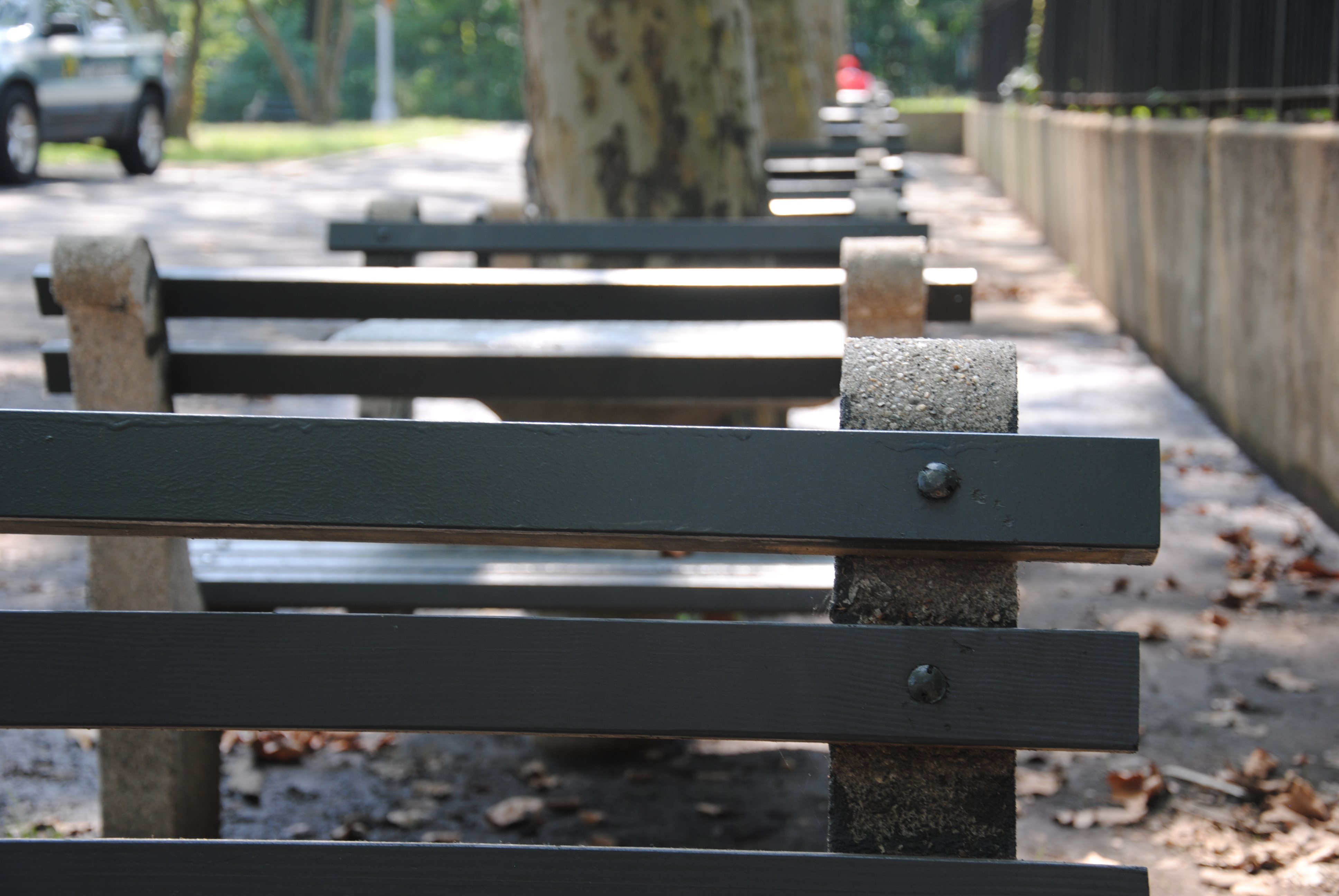 Park benches at Forest Park